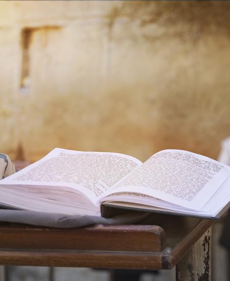 Halacha Study
